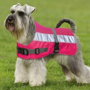 Flecta Hi-Vis Dog Jacket in Pink