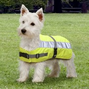 Flecta Hi-Vis Dog Jacket in Yellow