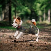Thermal Flecta Dog Jacket in Camouflage print with High Visibility Stitching