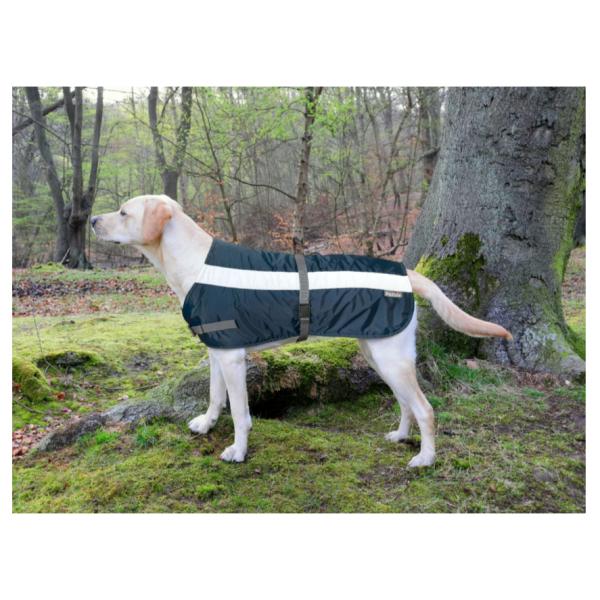 Flecta Dog Jacket Navy