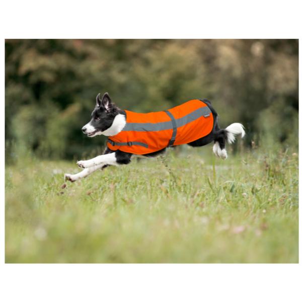 Flecta Dog Jacket Orange