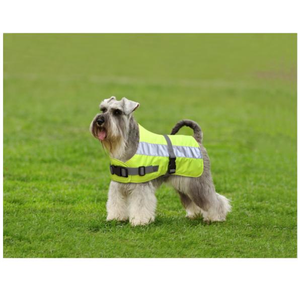 Flecta Dog Jacket Yellow