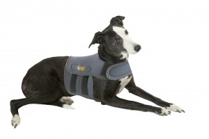 Petlife International dogs coat 12/02/14 12021401