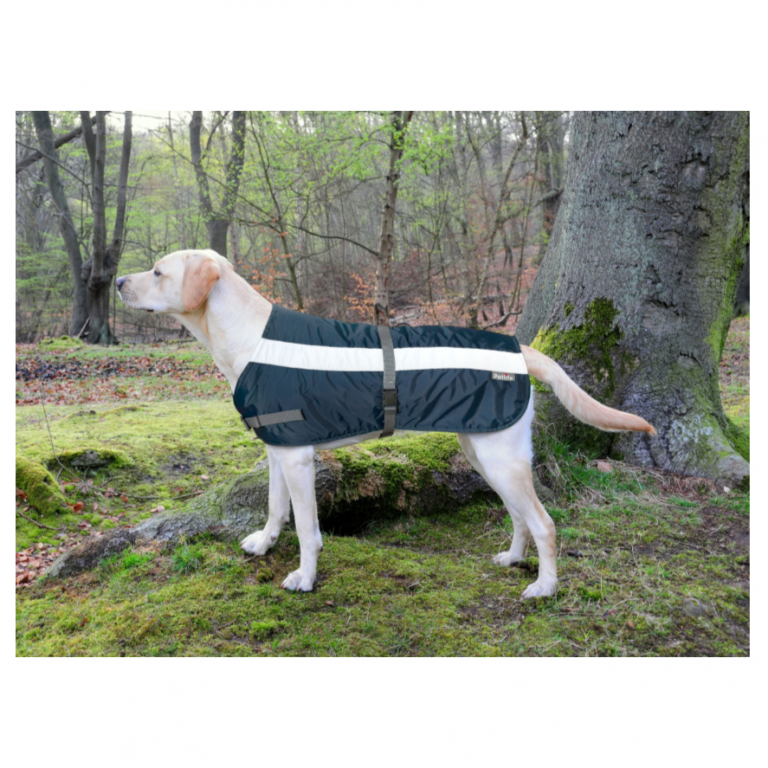 Flecta Dog Jacket Navy