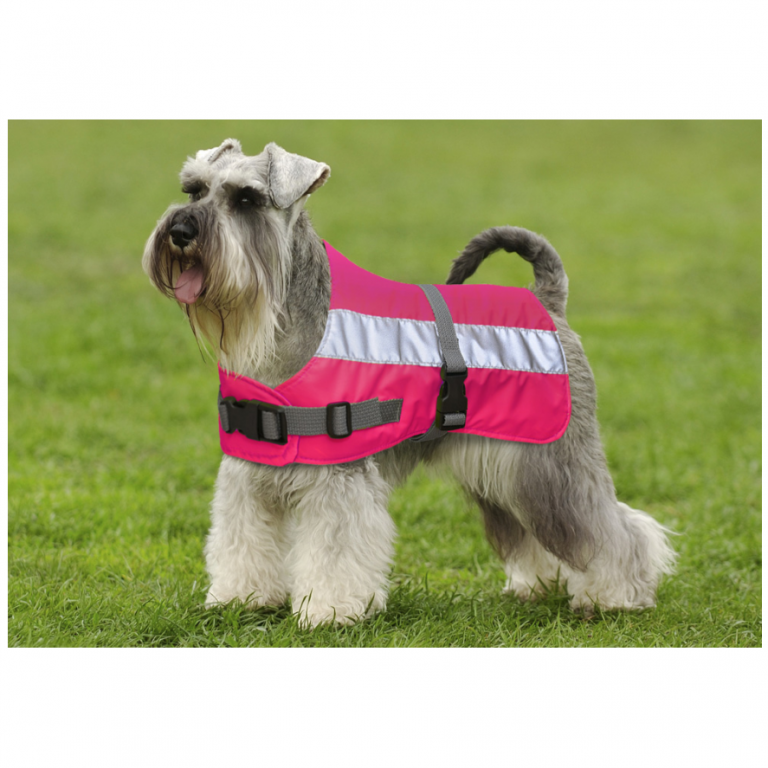 Flecta Dog Jacket Pink