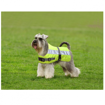 Flecta Dog Jacket Yellow